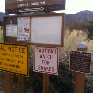 Rattlesnakes, cougars and bears - oh my!