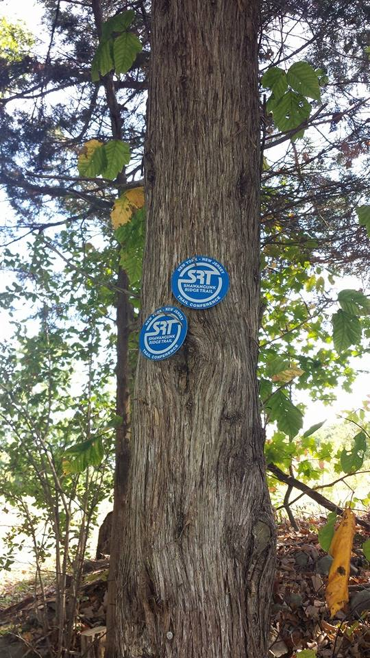 Trail blazes marked our course