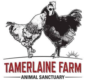 tamerlaine