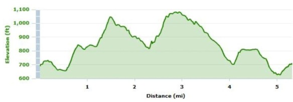 Run course elevation profile