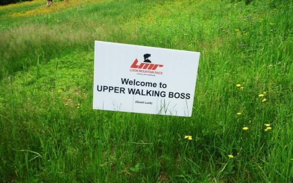 upper walking boss